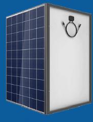 Фотомодуль Phono Solar Premium, Poly, PS275P